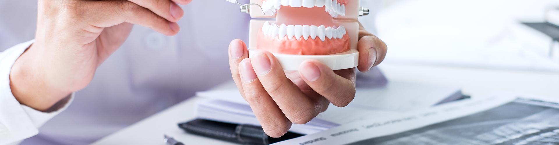 Dr. Lampé Krisztina